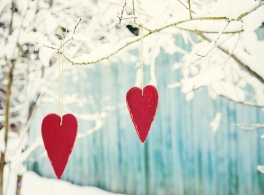 hearts-in-tree.jpg